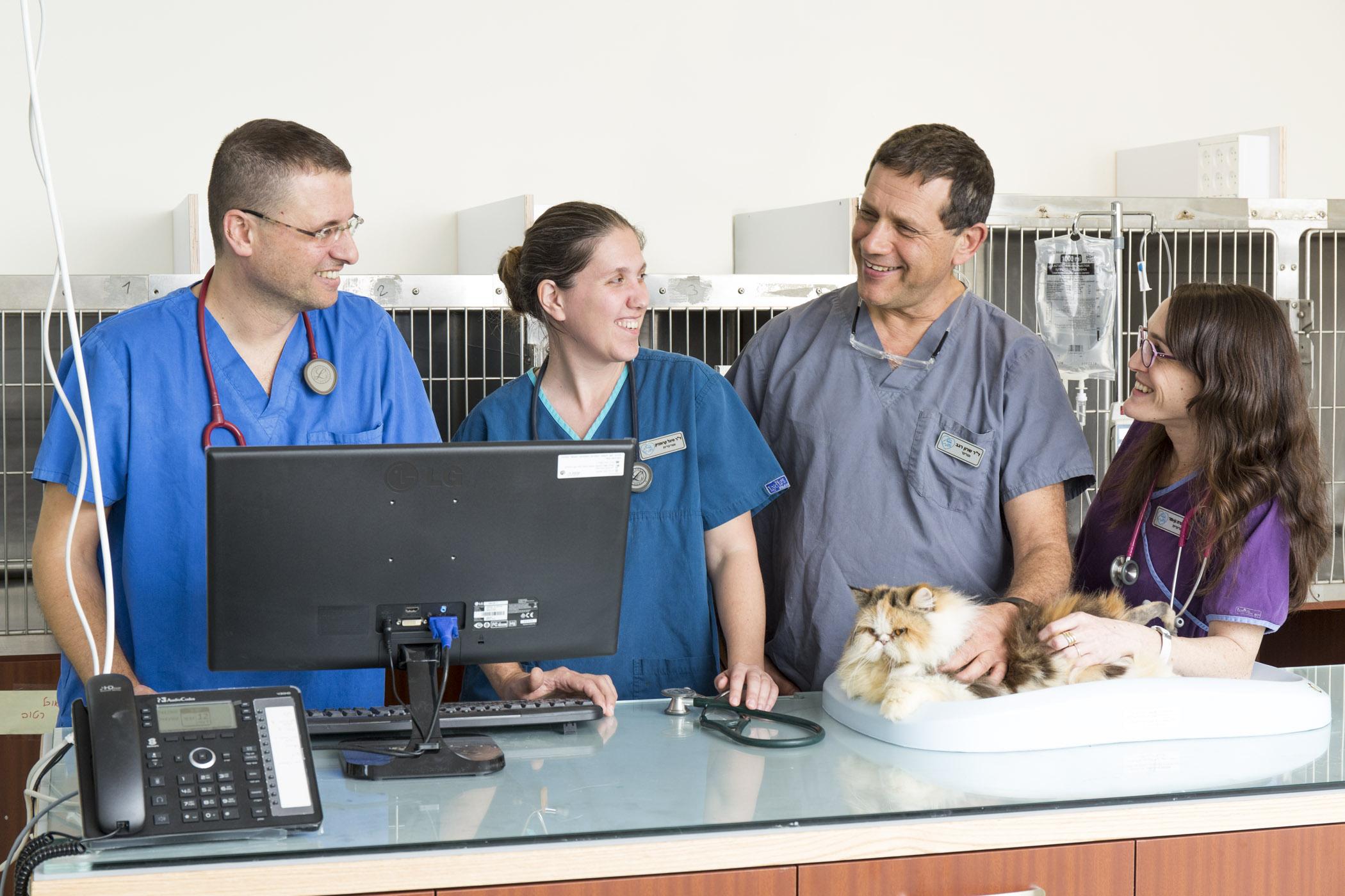 מרפאה ידידותית לחתולים